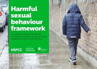 Harmful Sexual Behaviour Framework: An Evidence-Informed Framework for Children and Young People Displaying Harmful Sexual Behaviours