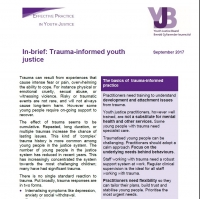 Trauma Informed Youth Justice Briefing (2017)