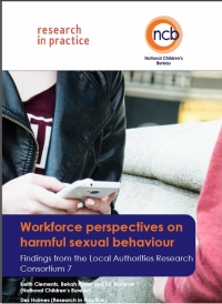 Workforce Perspectives on Harmful Sexual Behaviour - National Children's Bureau