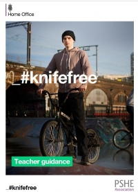 Knife Free Lesson Plans (for Key Stage 3 and 4)