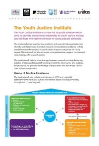 Youth Justice Institute