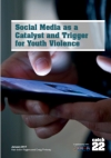 Social media as a catalyst and trigger for youth violence